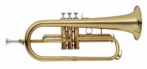 Stagg WS-FH215S