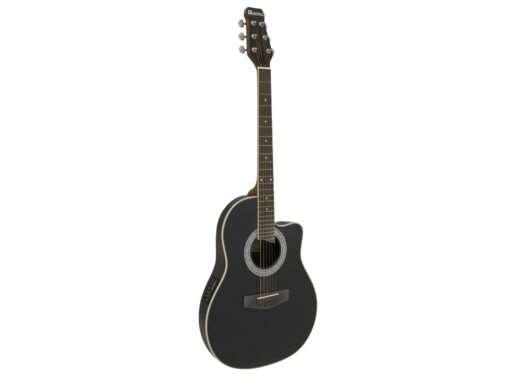 elektroakustická kytara typu Ovation