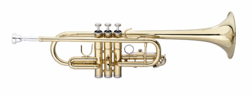 Stagg WS-TR255S